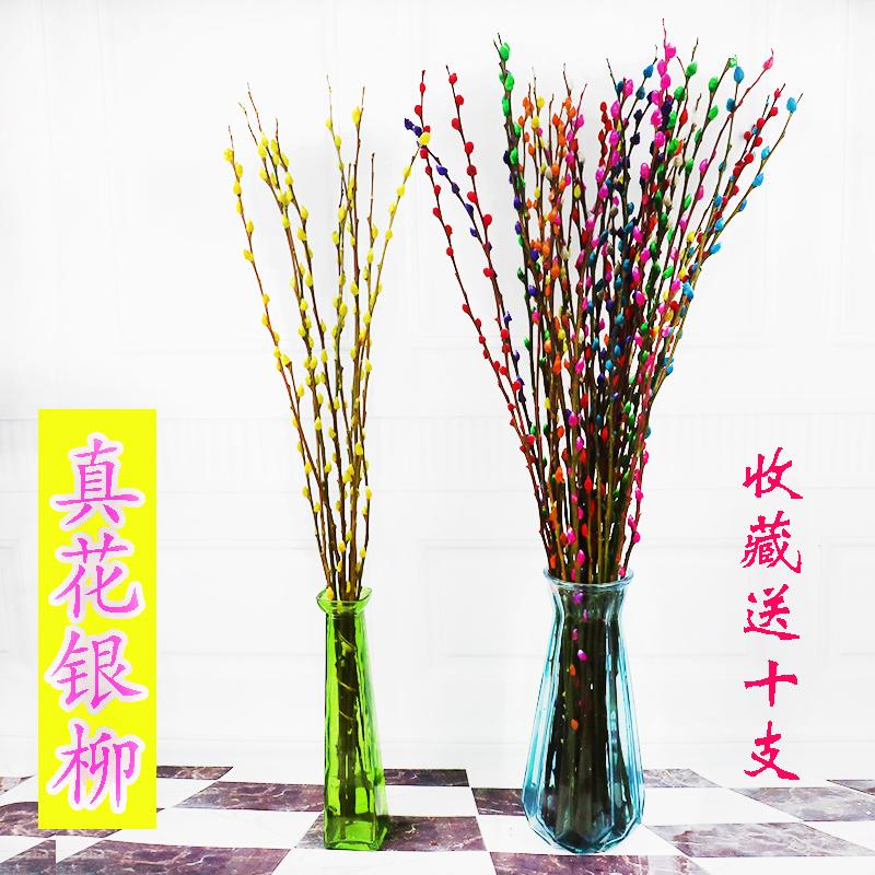 点击查看商品:年宵花卉银柳彩色银柳鲜枝真花水养植物银柳干花室内客厅装饰花束