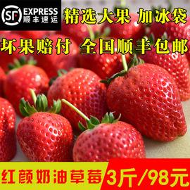 当季新鲜孕妇甜水果丹东99九九红颜奶油大果草莓免洗顺丰整箱3斤