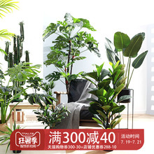 Nordic large green plants, indoor simulation plants, Paradise birds, turtle leaves, travelers, banana trees, ornaments, artificial flowers and potted ornaments.