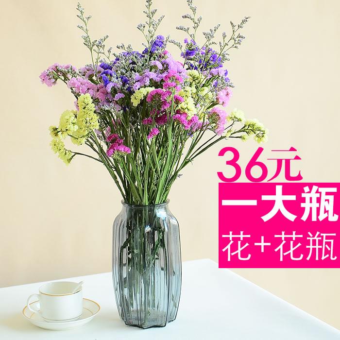 天然勿忘我真花干花大花束带花瓶套装客厅书房办公室装饰摆放花艺
