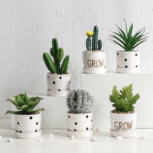 Scandinavian Simulated Plants Living Room Cactus Arrangement Creative Multi-meat Potted Decoration Green Planting Fake Flower Desktop Small Bonsai