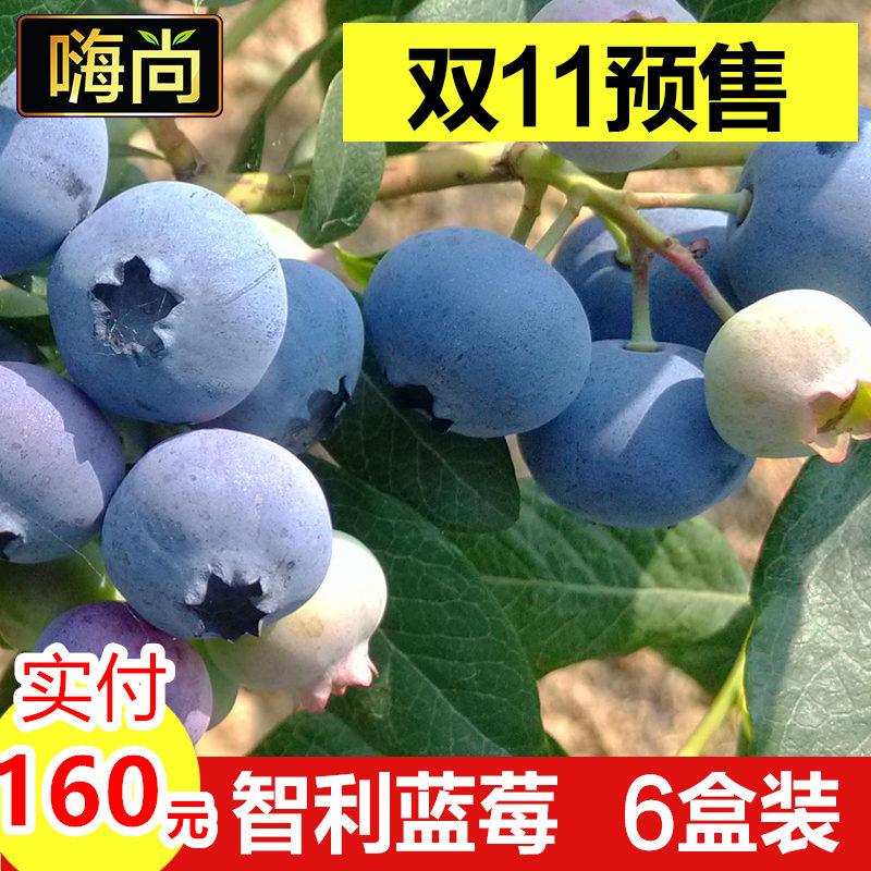 天猫双11预售蓝莓新鲜水果智利进口蓝梅鲜果125g*6盒顺丰包邮