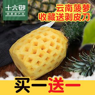 十六御  云南菠萝新鲜水果批发包邮非凤梨4.5斤装热带水果鲜果时