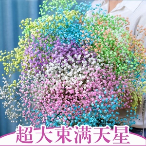 Gypsophila dried flower bouquet home furnishings natural air-dried real flowers living room bedroom decorative ornaments with bottle dried bouquet