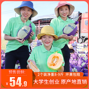 Cantaloupe Hainan Fresh Fruit Xiaomi No. 25 Free Shipping 2 Packs Netted Melon Seasonal 10 kg FCL