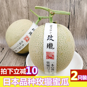 Japanese Variety Shizuoka Melon Melon Reticulated Melon Hainan Honeydew Melon 2 Pack Cantaloupe Fresh Fruit Melon