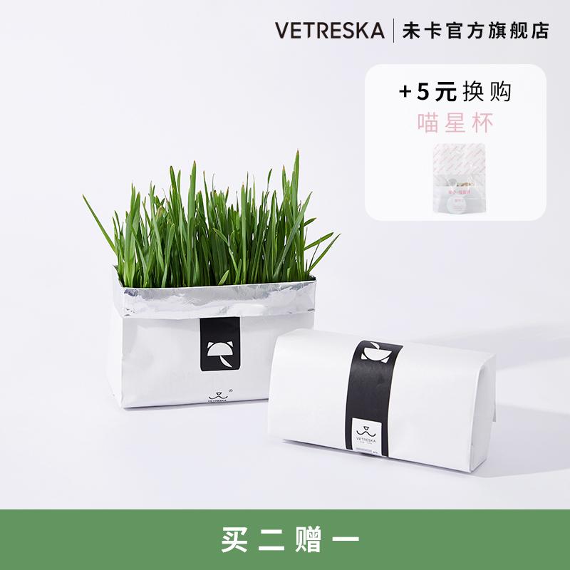 培种植套装小麦草猫薄荷零食