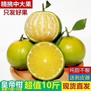 正宗广西武鸣皇帝柑中小果新鲜蜜桔