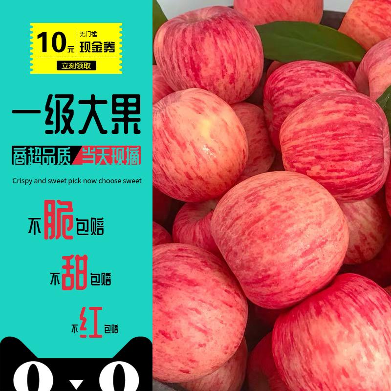 【脆甜+现摘+精选】现发当季时令苹果水果新鲜红富士一整箱10斤装