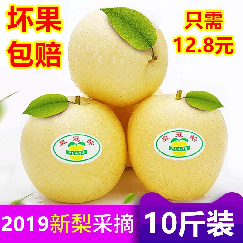 河北皇冠梨带箱10斤梨子新鲜当季水果香梨砀山酥梨包邮 鸭梨 雪梨
