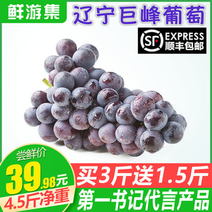 Kyoho grape fresh pregnant woman fruit Liaoning non-Yunnan summer black currant golden finger rose rose SF