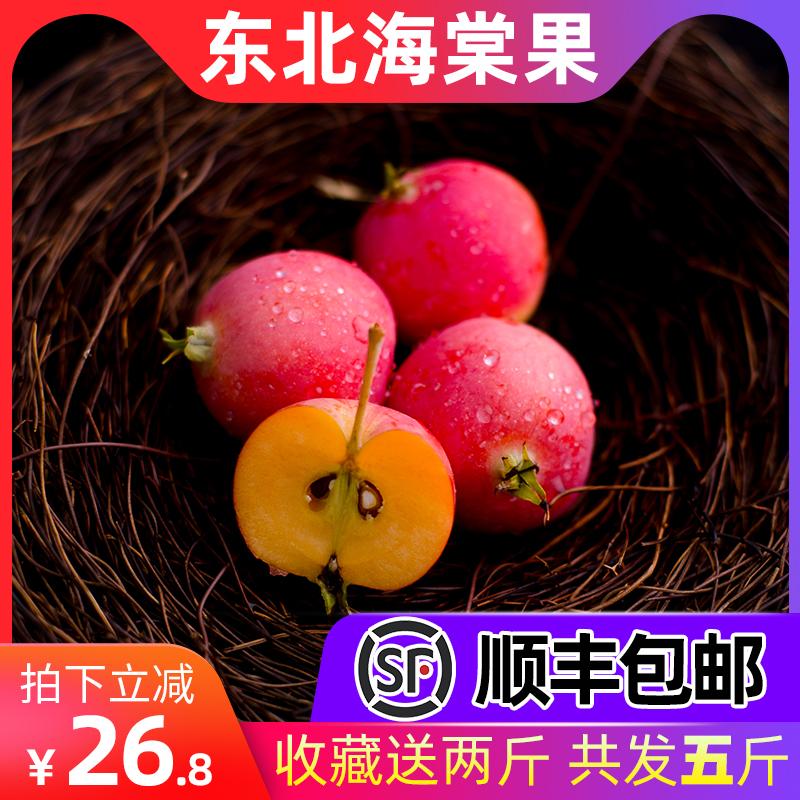 东北内蒙古新鲜水果特产沙果海棠果现摘现发孕妇红果像小苹果包邮