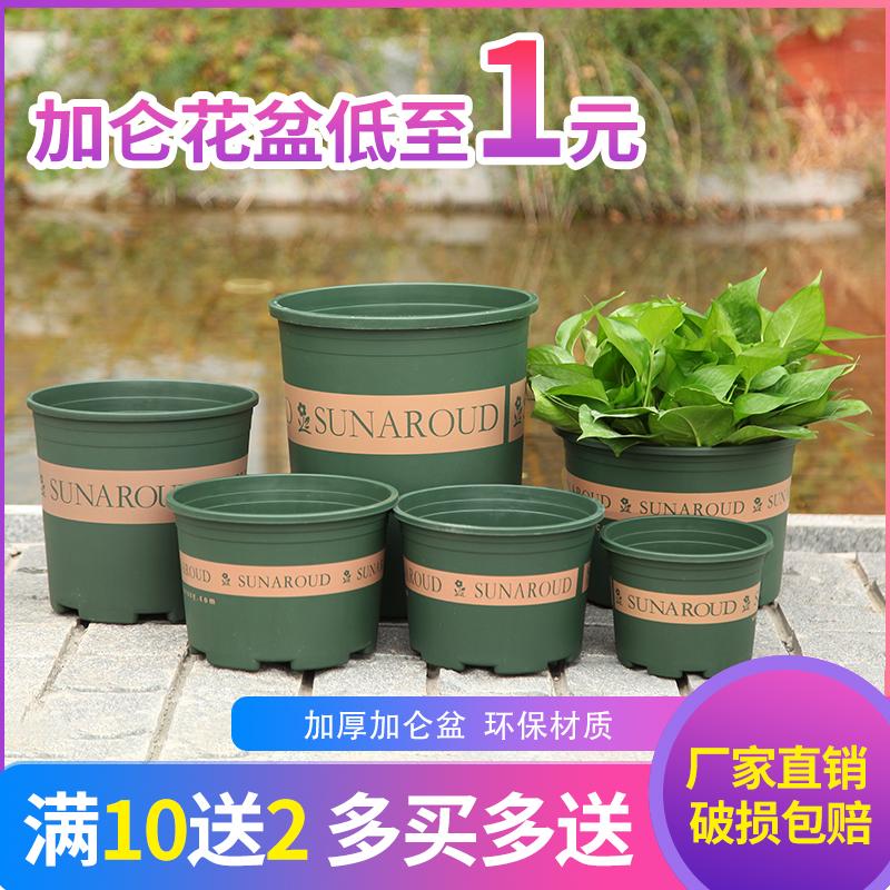 塑料矮胖加仑花盆二代加厚树脂处理特价大绿萝多肉玫瑰种植盆包邮