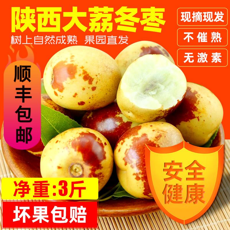 陕西大荔冬枣新鲜3斤净重现货现摘脆甜时令水果孕妇儿童青枣包邮