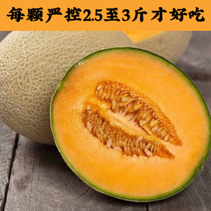 All Know Fruit Hainan Black Sand Cantaloupe Reticulated Melon Fresh Fruit Crispy Non-Xinjiang