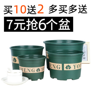 Plastic resin chunky gallon flower pot green rose rose fleshy large caliber clearance special offer thickened gallon pot