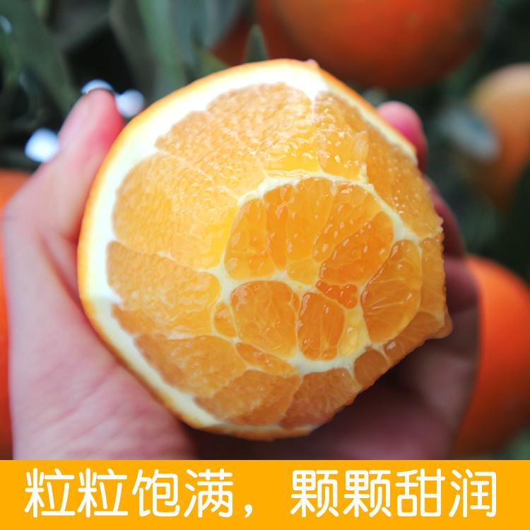 湖南新宁�~山特产脐橙手剥橙子新鲜当季应季孕妇水果整箱批发包邮