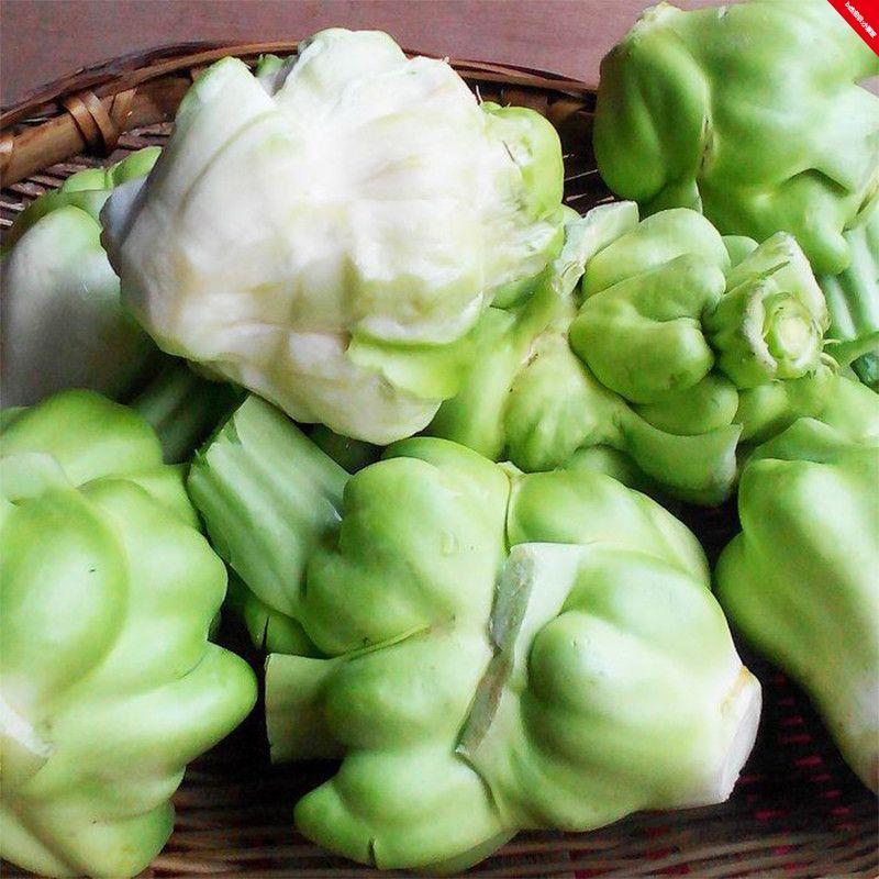 涪陵新鲜榨菜头青菜头8斤芥菜大头菜芥菜疙瘩鲜榨菜头蔬菜