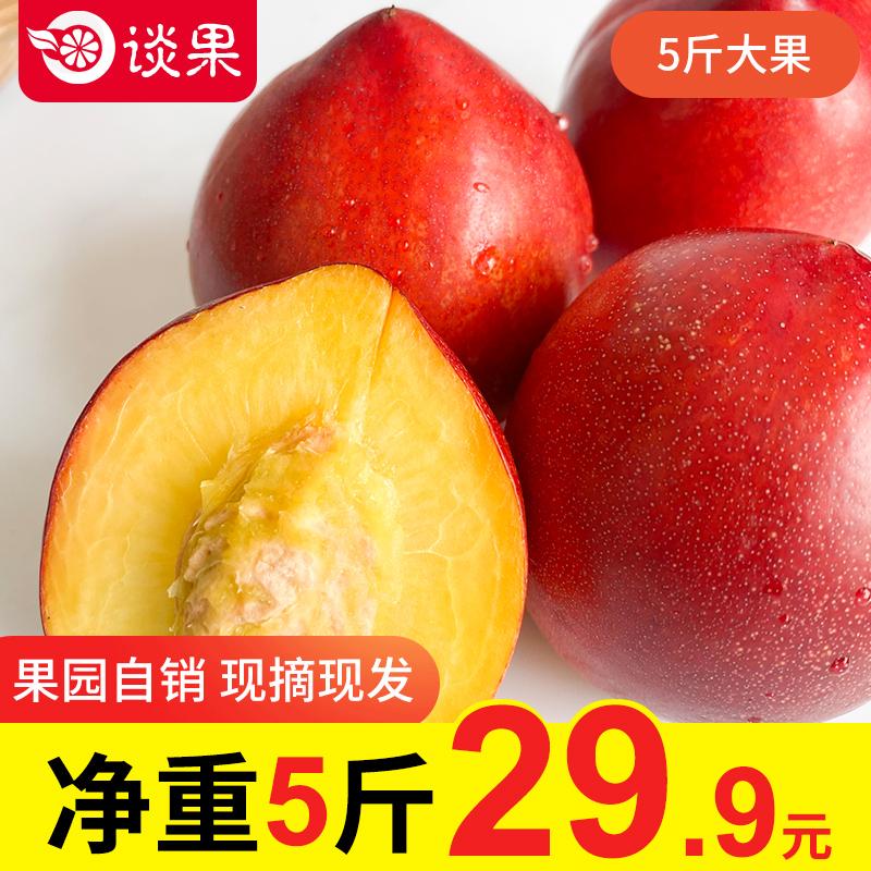 桃子新鲜当季现摘水果黄金油桃超甜水蜜桃5斤整箱包邮现发脆桃