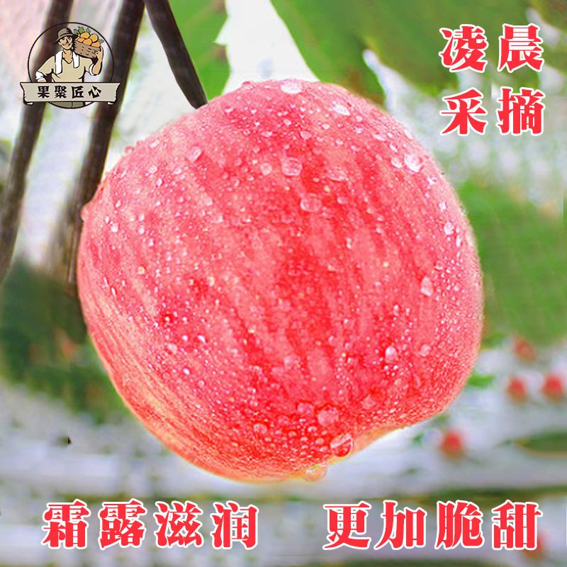 苹果鲜新10斤带箱水果新鲜丑苹果冰糖心当季陕西红富士苹果整箱