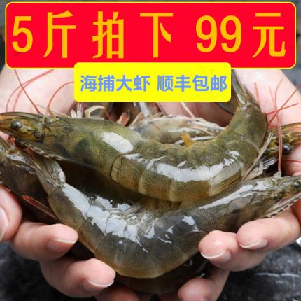 5斤青岛虾鲜活速冻海鲜水产新鲜虾基围虾特大厄瓜多尔白虾鲜虾冻