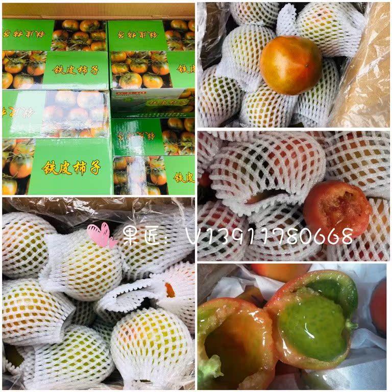 纯香甜多汁铁皮西红柿草莓柿子原箱5斤装 北京新鲜水果蔬菜包邮