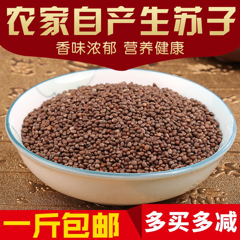 东北特产新鲜紫苏 生苏子500g 食用苏子籽 紫苏种子烧烤料 包邮