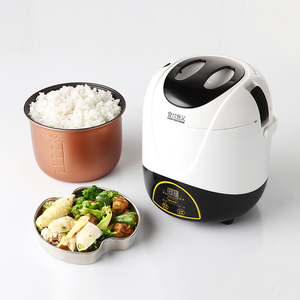 Single rice cooker dormitory student low power multifunctional mini rice cooker household small rice cooker 2 persons 1 porridge