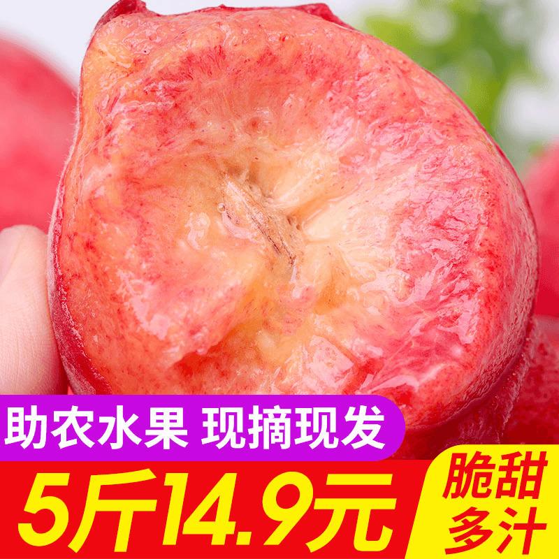 水蜜桃现摘现发5斤果园采摘当季水果应季脆甜孕妇食用多汁包邮