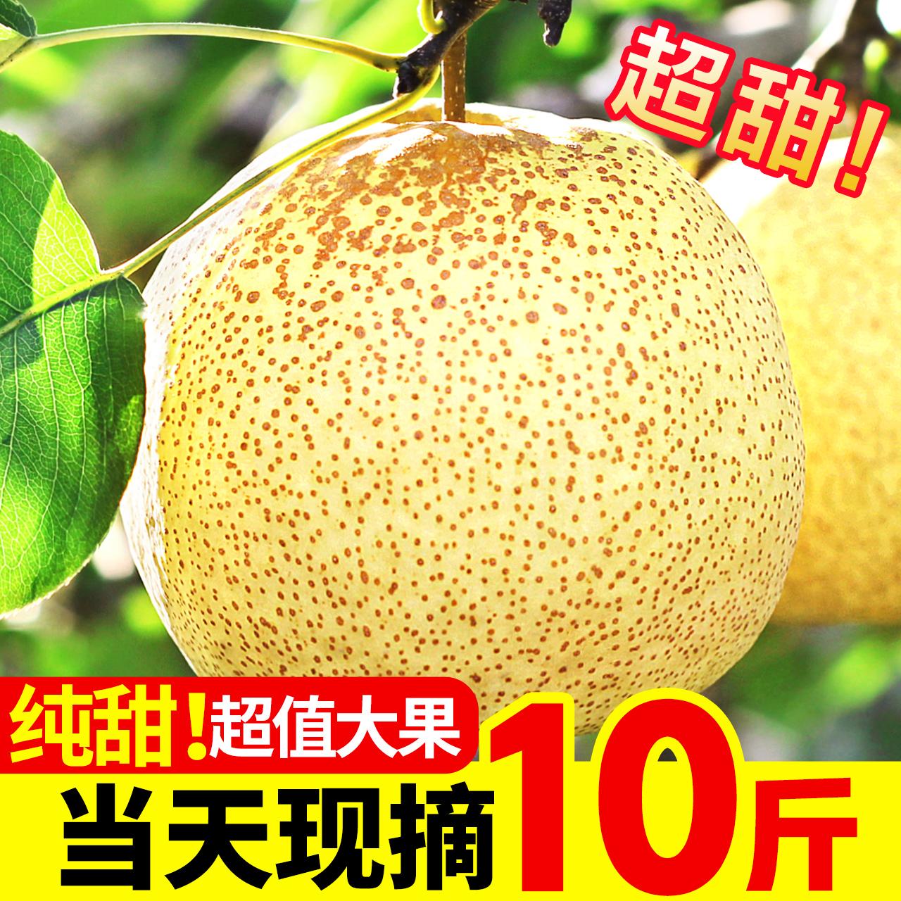 梨子新鲜10斤整箱砀山梨酥梨皇冠梨香雪梨应季水果当季带鸭梨贡梨
