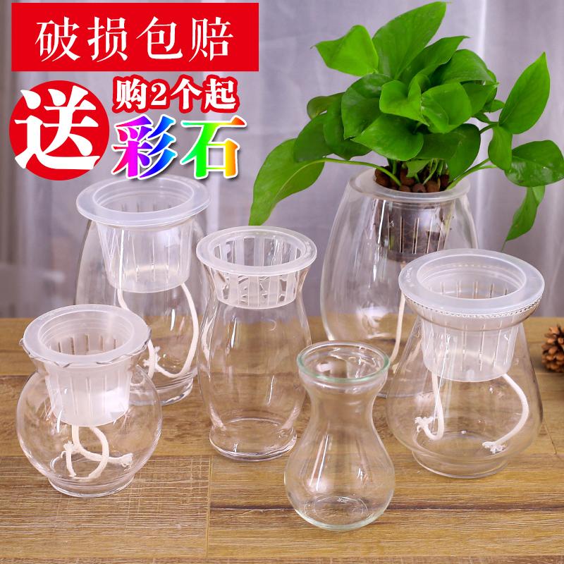 大号水培花瓶 绿萝吊兰花瓶 透明圆球鱼缸 懒人自动浇水玻璃花盆