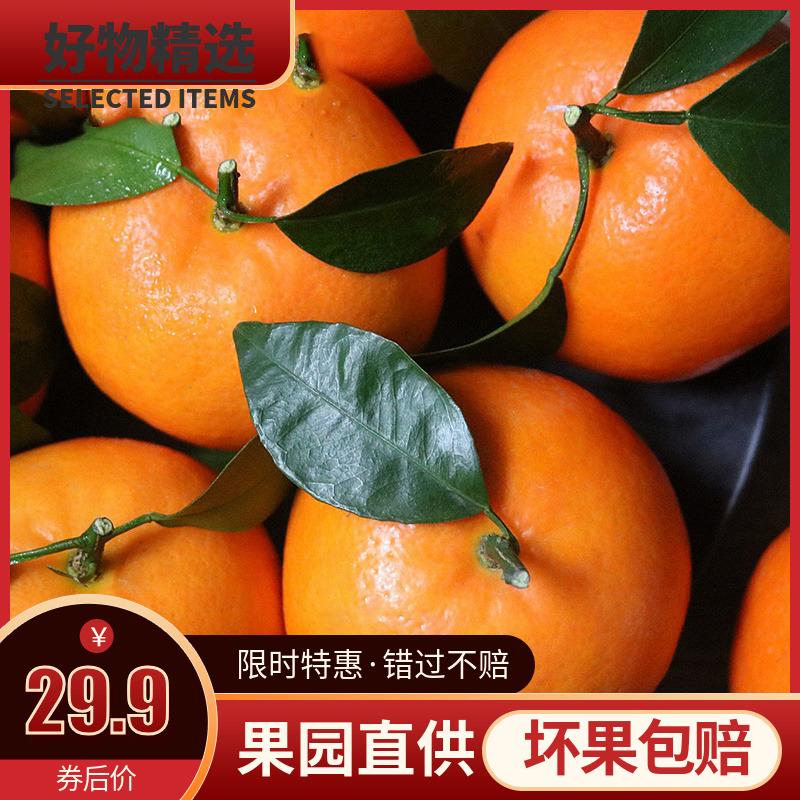 四川眉山贵妃柑橘子新鲜水果皮薄水分足爱媛42号桔子整箱5斤包邮