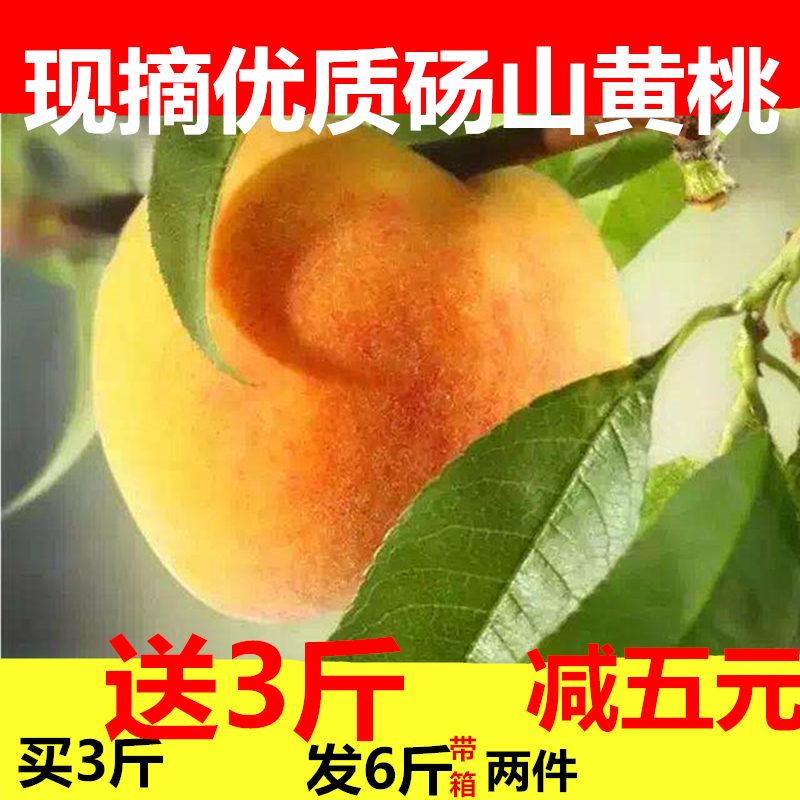 砀山83黄桃5斤新鲜水果桃子包邮当季非水蜜桃现摘现发以琳泉果
