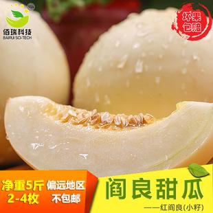 陕西 地标产品阎良甜瓜香脆甜糯