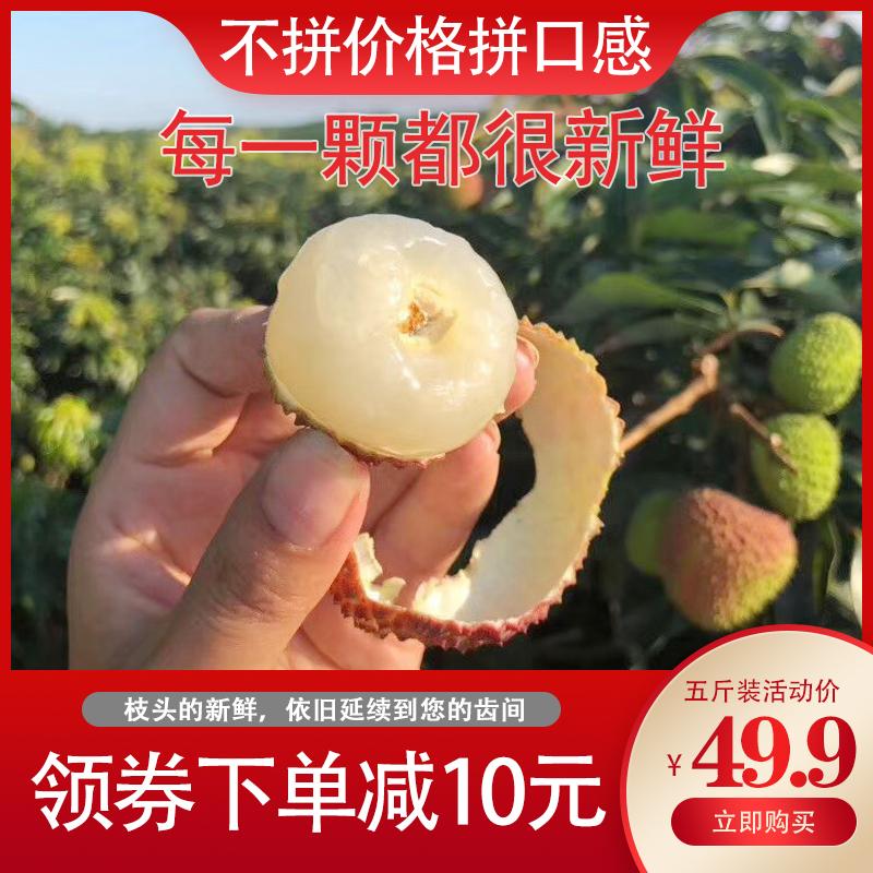 荔枝新鲜包邮 妃子笑荔枝新鲜水果现摘现发广东茂名高州白糖罂5斤
