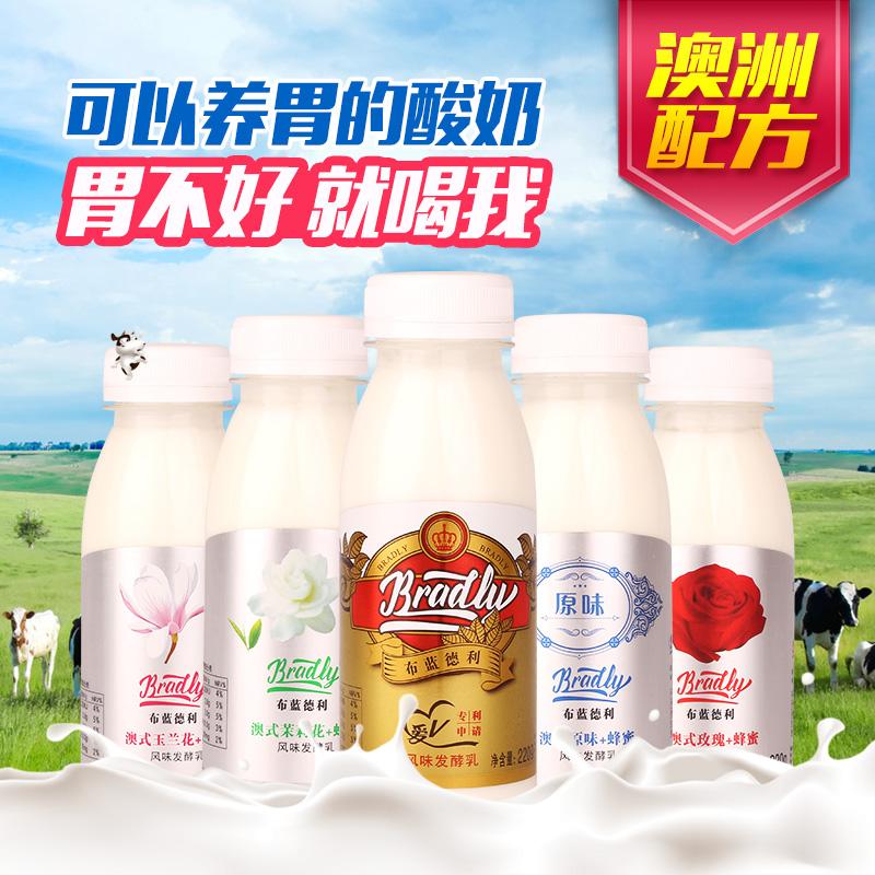 澳洲布蓝德利风味酸奶乳酸菌发酵菌220g/瓶益生菌多味酸奶8瓶包邮