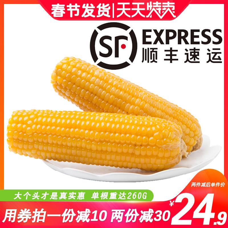 山西甜糯黄玉米10棒*220G香黏糯米玉米新鲜杂粮早餐玉米真空包装
