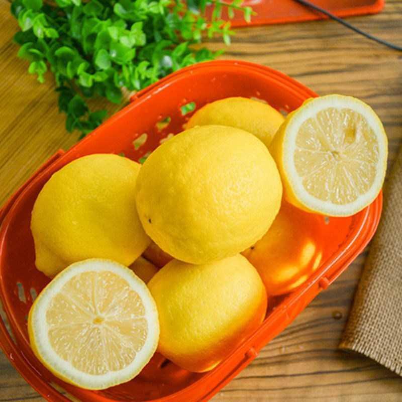 广东籽黄柠檬新鲜柠檬5包邮现摘鲜柠檬香味浓奶茶饮品用