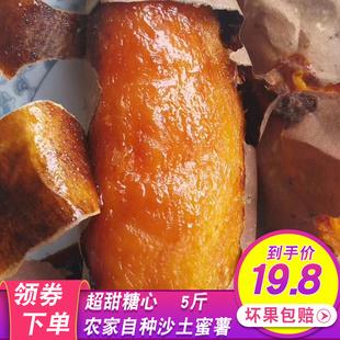 红薯新鲜农家自种蜜薯沙地现挖地瓜糖心超甜烟薯25小番薯山芋红暑