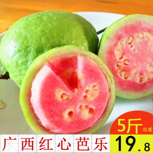 Guangxi Red Heart Guava Guava Tropical Fruit Fresh 5 kg Farm Specialty Pan Pomegranate Seasonal FCL 10