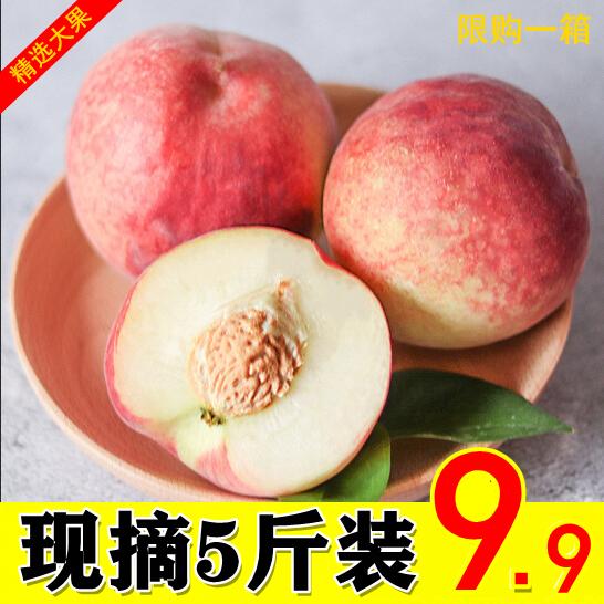 2020现摘现货甜蜜水蜜桃5斤脆甜桃子新鲜当季孕妇水果雪桃毛桃子