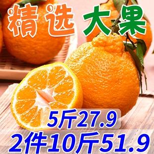 四川不知火丑橘 新鲜水果当季桔子橘子耙耙柑丑柑拍2件毛重10斤