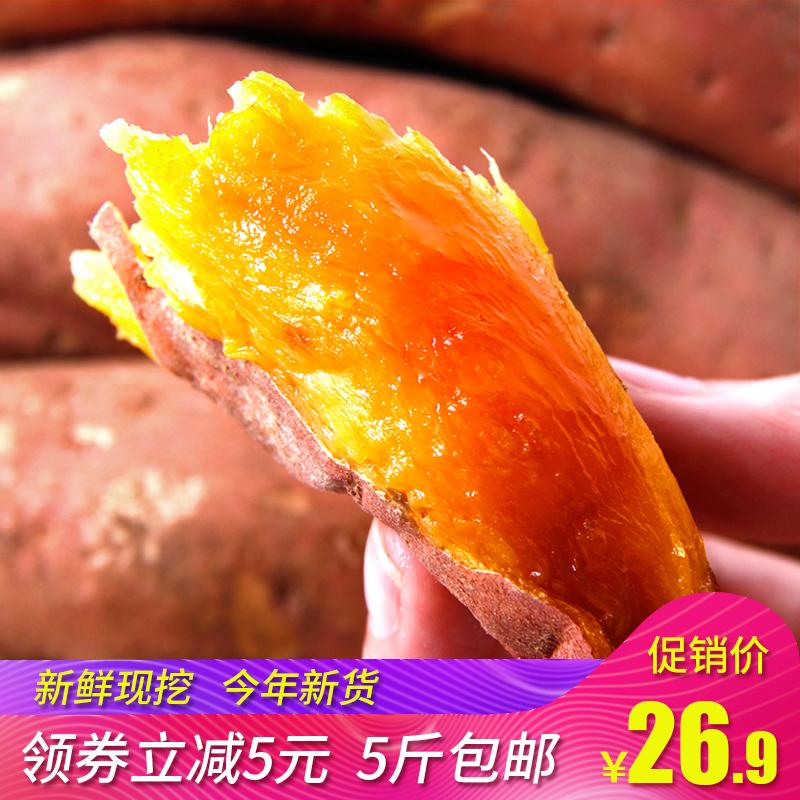 深野沙地蜜薯沂蒙红薯小香薯5斤农家自种新鲜蔬菜地瓜现挖烤番薯