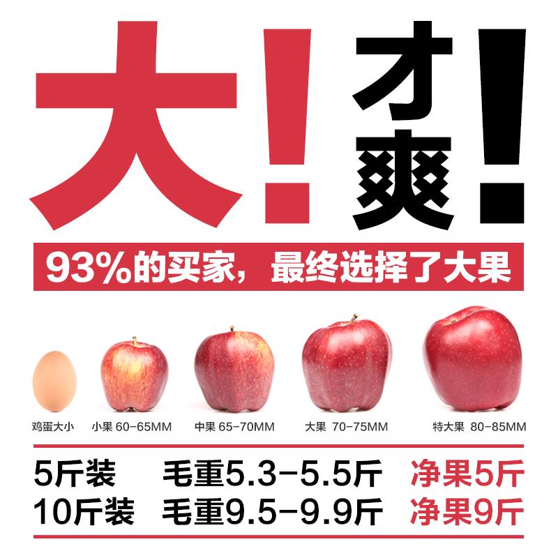 新鲜花牛苹果带箱10斤包邮水果红蛇果粉面苹果非冰糖心红富士