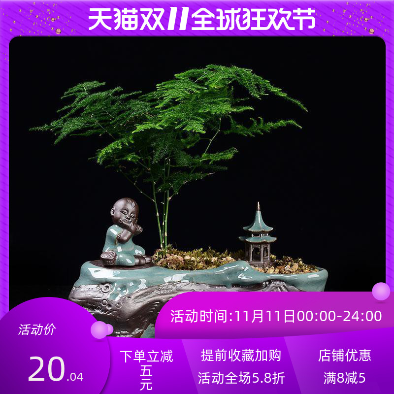 花盆陶瓷创意中国风组合哥窑室内桌面绿植盆栽多肉菖蒲文竹盆景盆