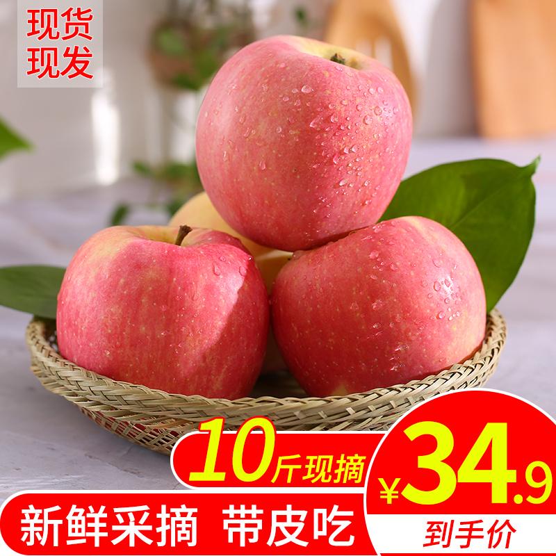 苹果水果当季新鲜红富士10斤包邮应季陕西洛川萍果一整箱吃的脆甜