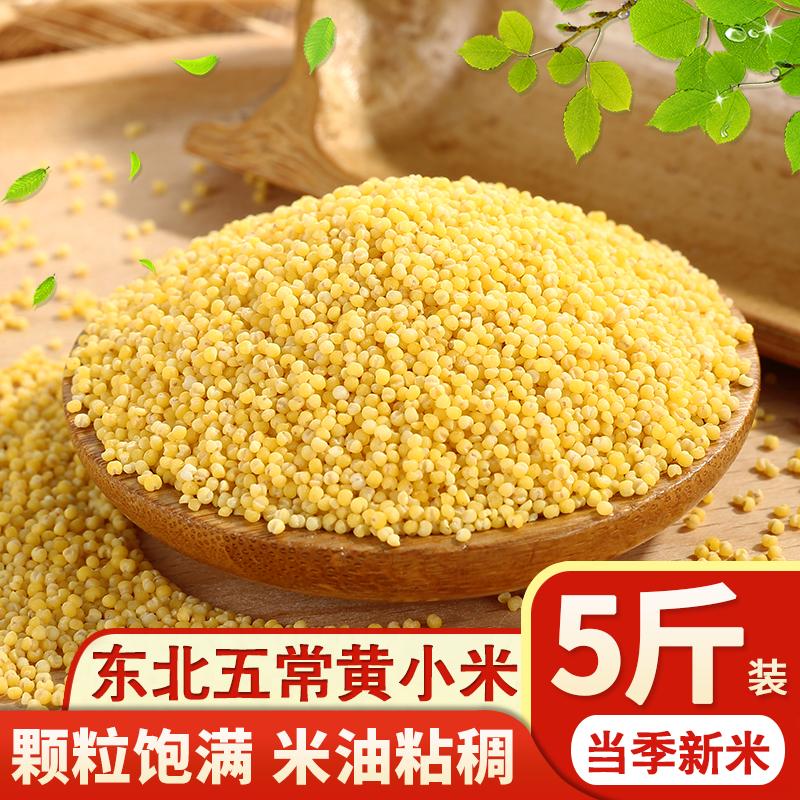 正宗小黄米新米5斤 小米粥东北农家自产杂粮黄小米月子米宝宝辅食