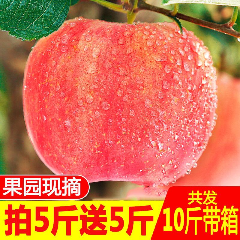 陕西红富士苹果水果新鲜应季10/5斤现货新鲜脆甜非嘎拉冰糖心