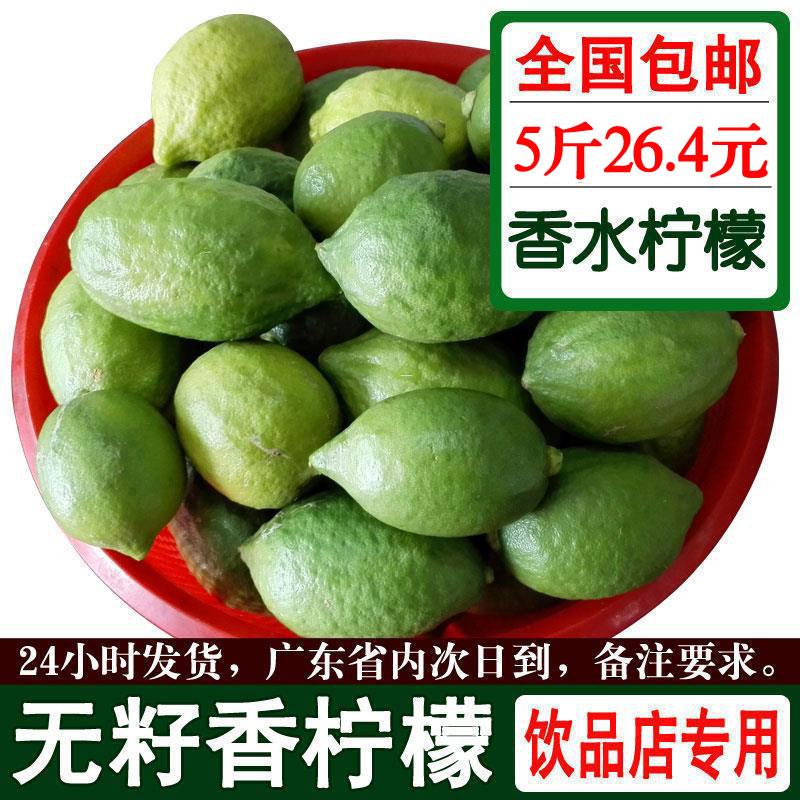 广东本地新鲜无籽四季香水柠檬5斤一级大果绿青柠檬有机优质水果