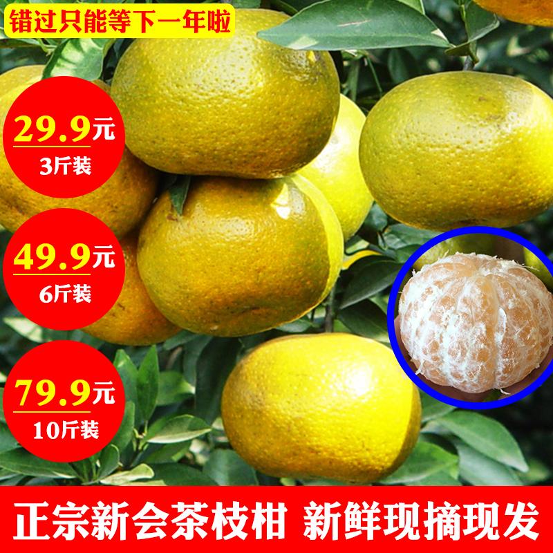 正宗新会柑6斤10斤橘子青皮二红陈皮茶枝新鲜水果食用特产热卖